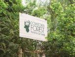 "Svečių namai Vilniaus centre ""Downtown Forest Hostel & Camping"""